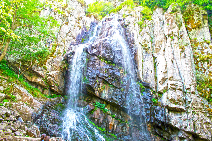 Boyana Waterfall Sightseeing Excursions